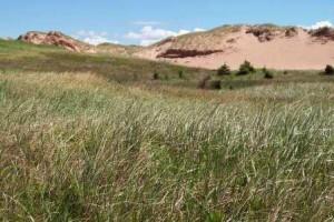 16 dunes pei