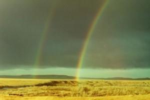 4 Brocket AB rainbow