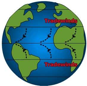 6 tradewinds