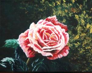 2012 09 14 Rose 8x10s