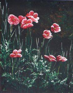 2016-11-11-poppies-3-montagnac-11x14s