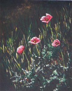 2016-11-11-poppies-5-troo-11x14s