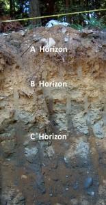 18 soil profile
