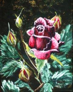 2012 09 21 Rose 8x10s