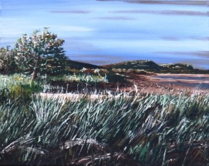 2012 12 29 The Beach at Rossway NS 11x14s