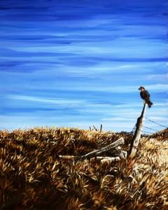 2013 07 Prairie Falcon small