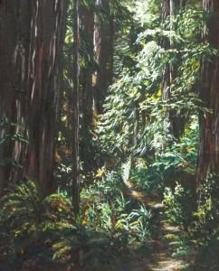 2015 06 01 Redwoods 16x20